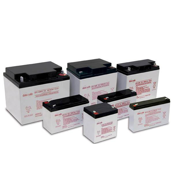 DataSafe NPX Batteries